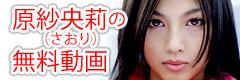 原 紗央莉(さおり)の無料動画